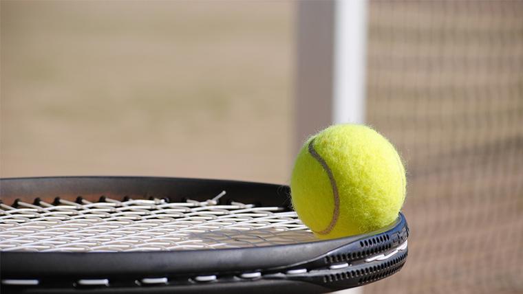 協会 テニス 奈良 県